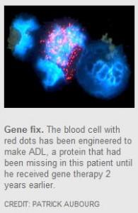 Gene Fix